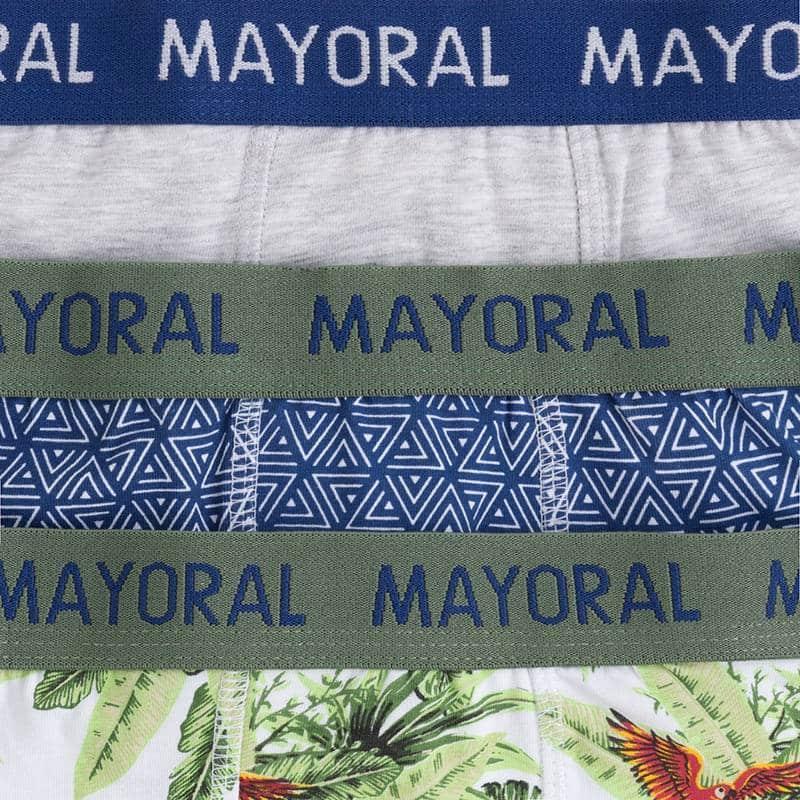 Mayoral Boxer